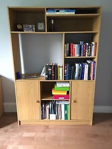 TV Wall-Unit / book shelf