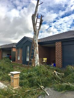 Tree and plant removal Melbourne Wide