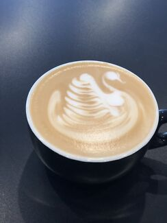 Experienced Barista with latte art skills Lathlain Victoria Park Area Preview
