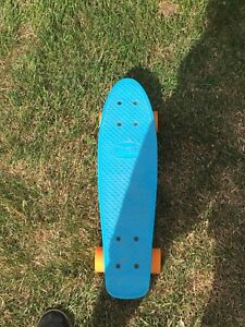 Mini skateboard (penny type)