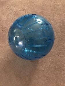 Small Animal Exercise Ball - MEGA - 13""