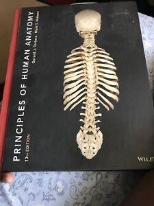 Principles of Human Anatomy by