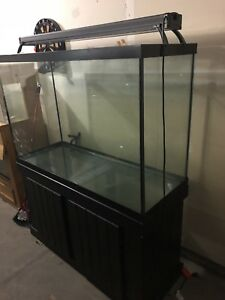 116 gallon aquarium (tall)