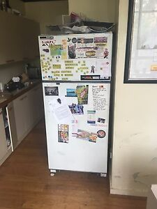 Free Huge Fridge Ainslie North Canberra Preview
