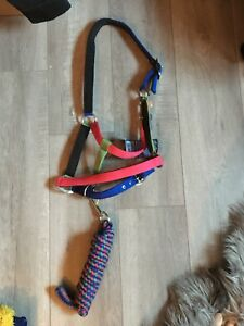 Rainbow Halter - full size