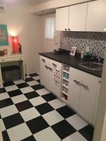 Large, new one bedroom basement apartment