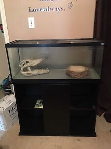 Aquarium with screen top and stand