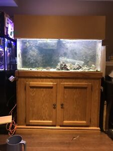 55gal Tank and Stand