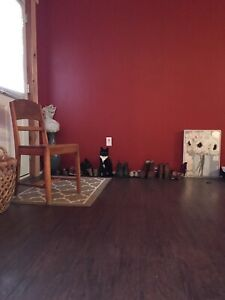 Roommate wanted,  Maces Bay $450 all included