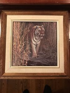 "Tiger picture  16"" x 16""  glass front frame"