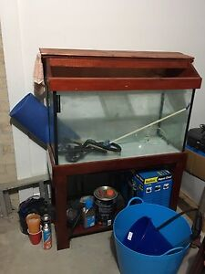 3 foot fish tank with stand, hood, light and external cannister $200 Blacktown Blacktown Area Preview