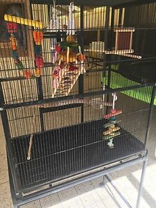 Large Bird Cage Bertram Kwinana Area Preview