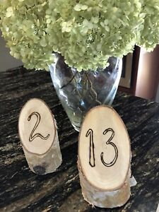 Birch table numbers 1-20