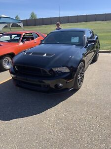 2013 Shelby Gt 500