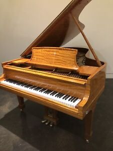 Steinway&Sons B, Crown Jewel collection