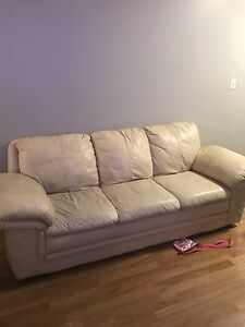 Sofas couch