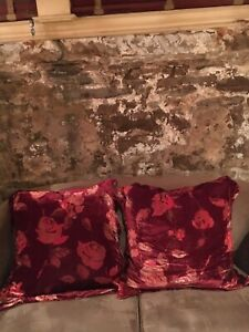2 Eurosize pillows with or without Pottery Barn velvet shams