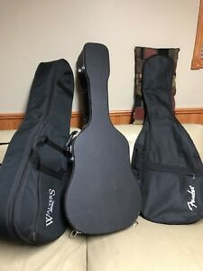 Guitar bag. Case