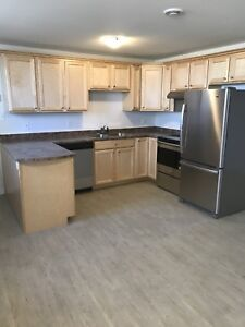 Newly renovated All inclusive  1 bedroom basement apartment
