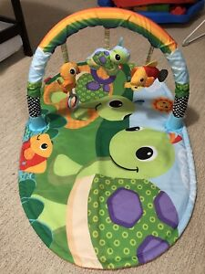 Baby Items:  Carrier, Play Mat, Change Pad, Nursing Pillow