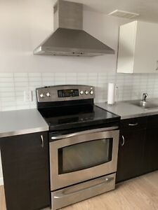 Stainless steel stove and fan