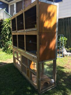 9 CANARIES & large 8 compartment cage