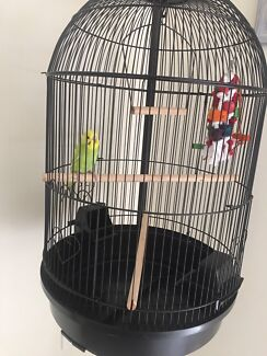 BRAND NEW big round cage $50 each cage (stand extra)