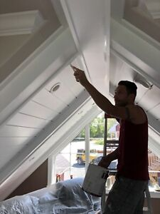 Professional Painters with 15+ years experience $18 hr.