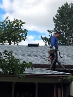 Perfect roofing roofing