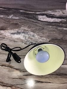 Lampe chauffante pour terrarium