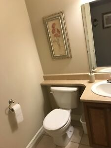 Bathroom sinks, faucets and countertops