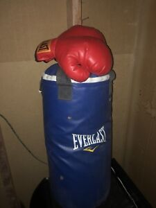 Kids boxing bag and gloves