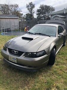4.6L FORD MUSTANG
