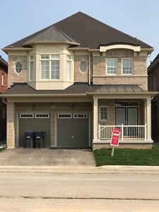 Furnished home available brand new
