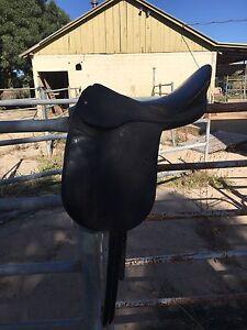 Kreiger dressage saddle Merrigum Outer Shepparton Preview