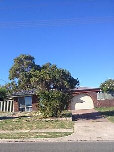 House to Rent Craigie Joondalup Area Preview