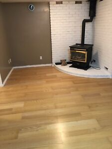 One Bedroom Walkout Basement For Rent.