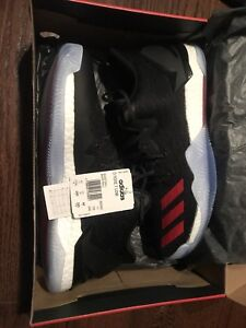New D Rose 7 LOW size 11.5