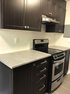 Spacious Fully Renovated 2 Bedroom in Britannia - October 1st