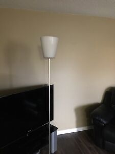 Stainless steel Floor lamp  with led bulb