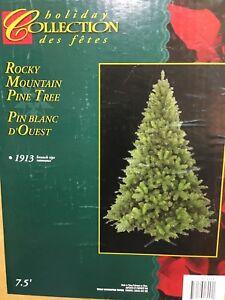 Rocky Mountain Pine Tree 7.5 Foot