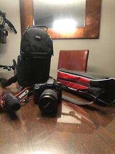 Canon 70D slr with 18-135 mm lens