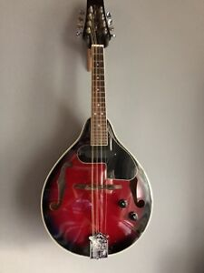 Mandolin with pickup