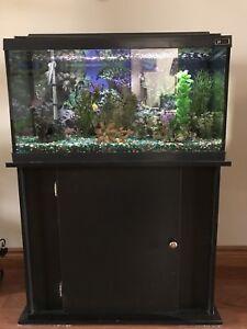 25 gal aquarium and stand