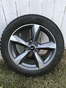 Mustang winter tires and rims
