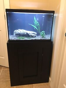 Looking For: 15-30 Gallon Full Setup!