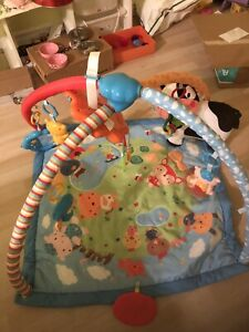 Baby play and fun gym mat