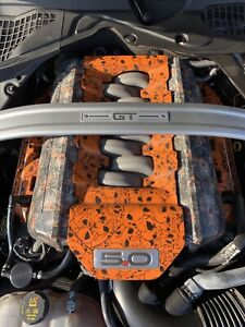 Custom Mustang Engine Plenum cover and coil covers