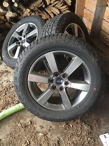 "20"" ford factory rims"