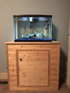 Fish tank, stand and fish!